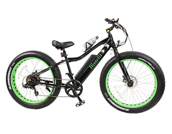 electric bike rental in Galena